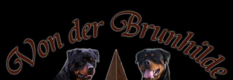 vdb_logo_website_1.jpg