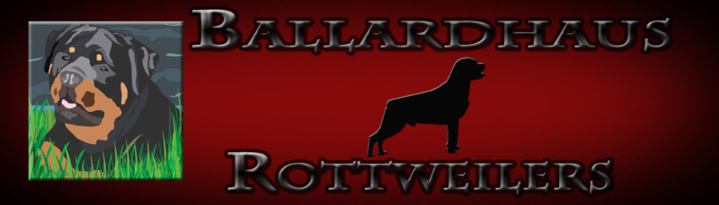 BallardhausBanner1 copy.jpg