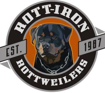 rott iron logo 2008.jpeg