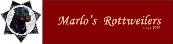 banner-marlos-rottweiler.jpg