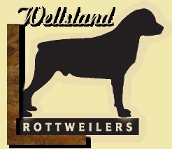 wellsland_logo.png