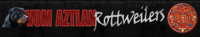 vom Aztlan Rottweilers   German Rottweiler Breeders  Puppies  Import and Sales.png