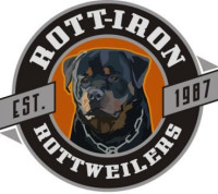 rott iron logo 2008.jpeg